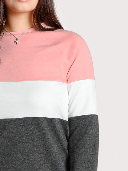 Plus Cut And Sew Sweatshirt