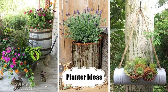 Planteridéer: 18 inspirerande designtips för underbar trädgårdscontain
