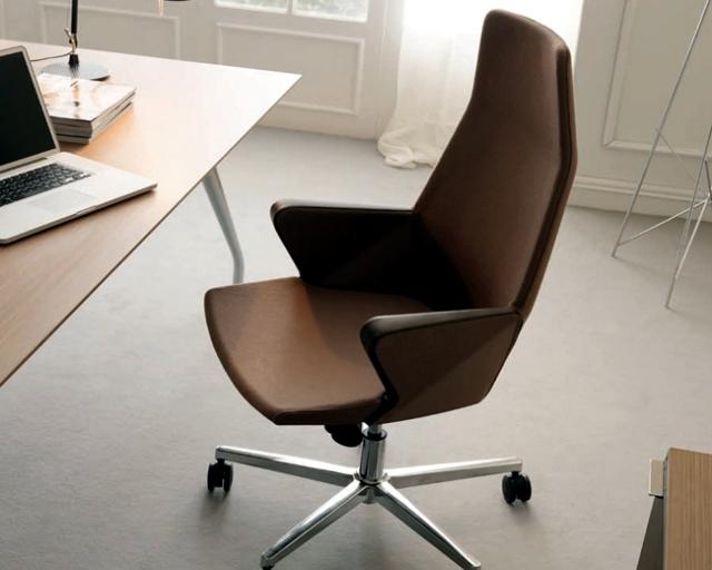 kontor för stoldesignidéer - till arbetsplatsen, efter smak |  Interiör .