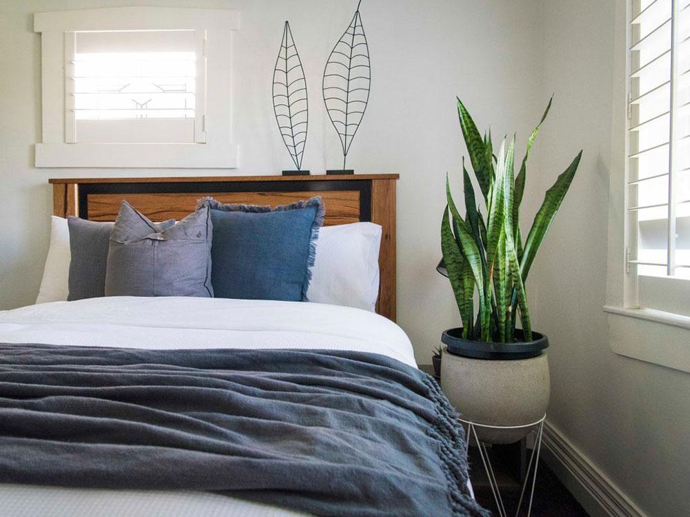 Sovrum-växter-1024x768 4 inrednings-tricks för att förvandla ditt sovrum