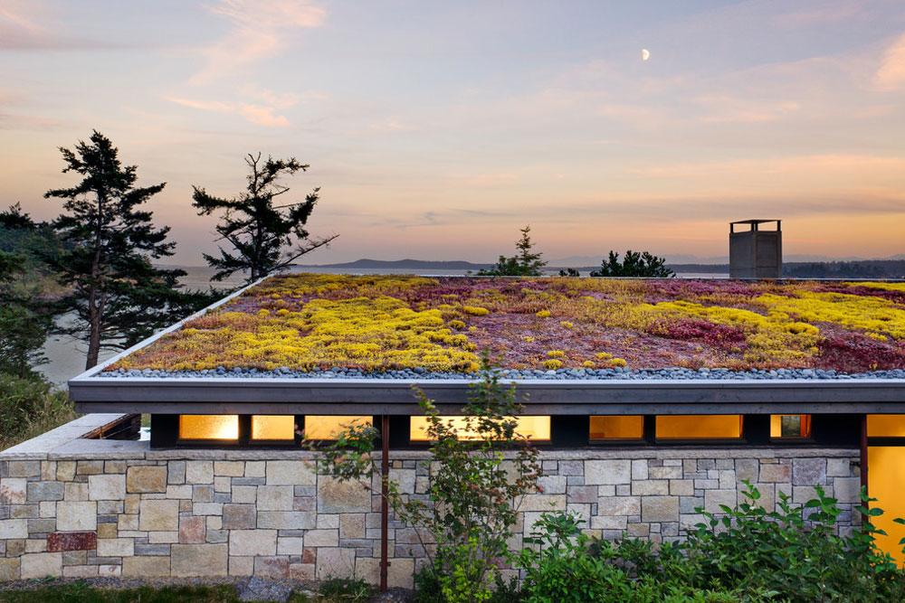 Fördelar med ett grönt tak 2 fördelar med ett grönt tak