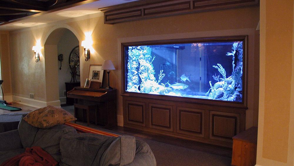Ändra utseendet på ditt rum med denna akvarietank 5 Ändra utseendet på ditt rum med dessa akvarietankar