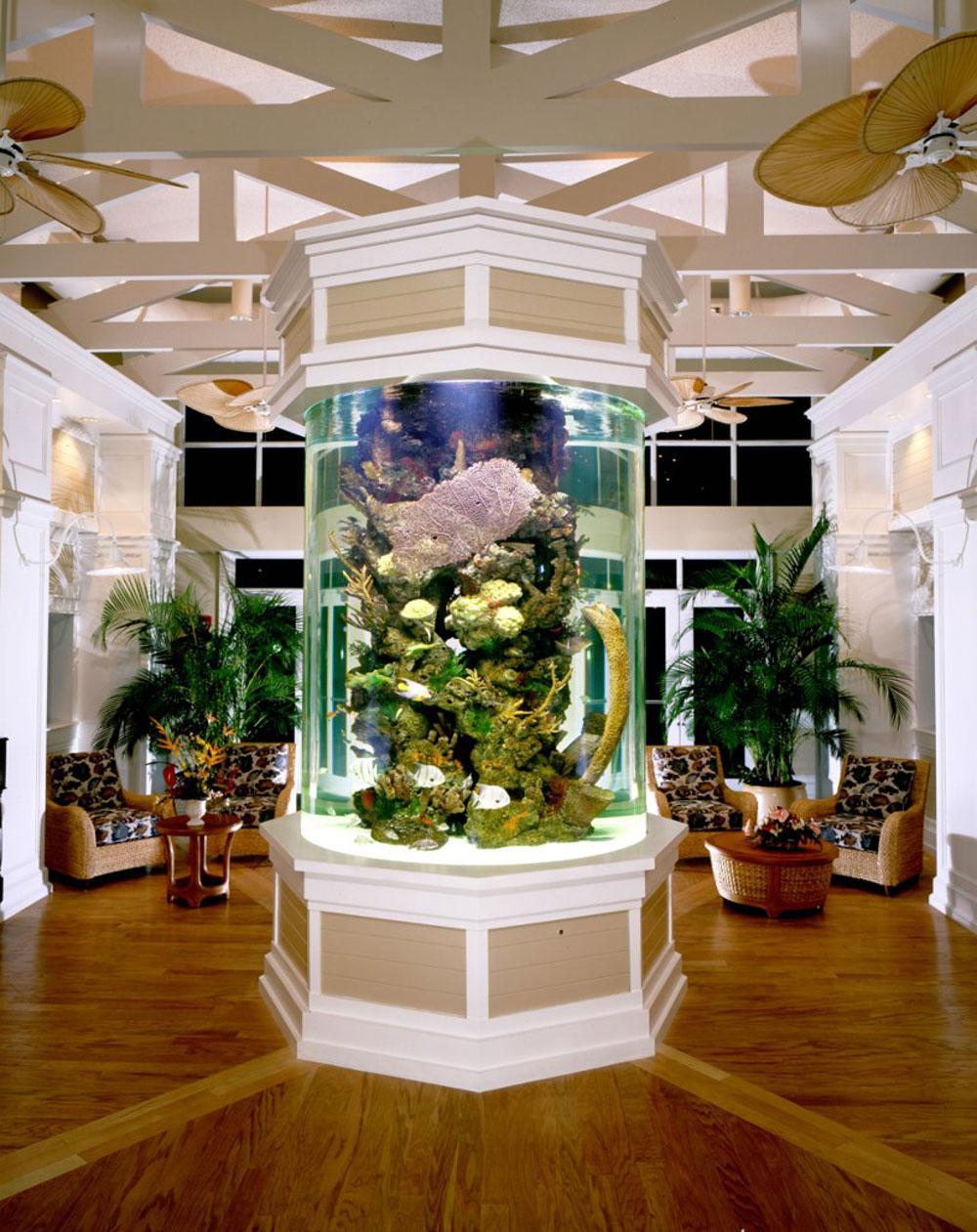 Ändra utseendet på ditt rum med denna akvarietank 3 Ändra utseendet på ditt rum med dessa akvarietankar