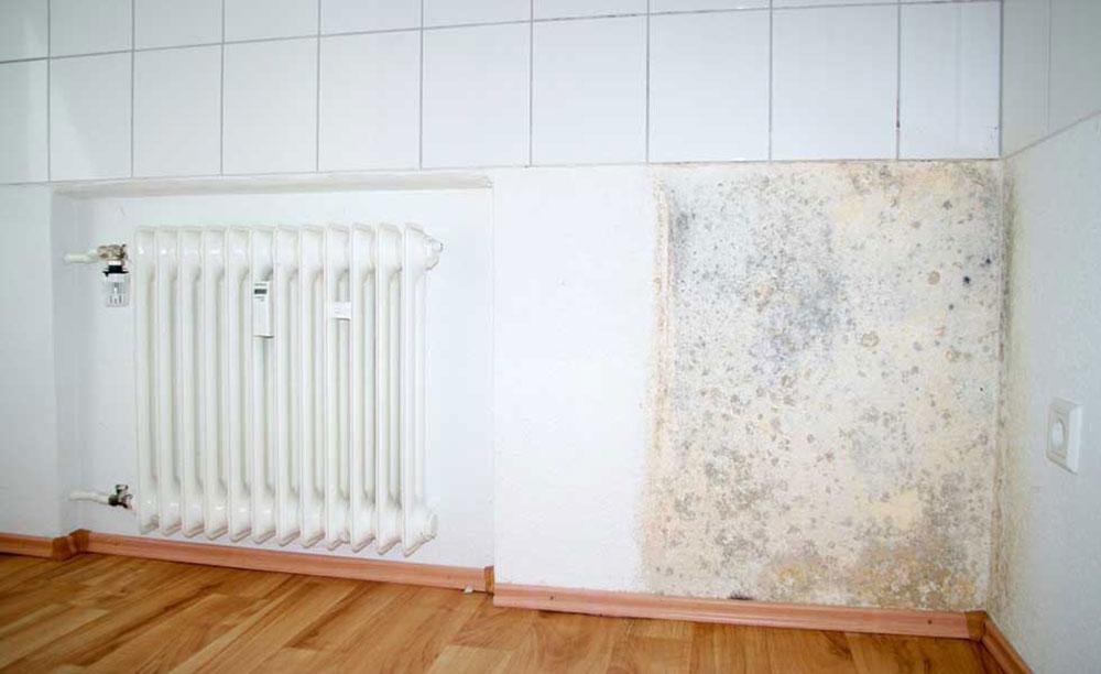 Fuktig vägg och kylare1 Hur du håller ditt hem fuktigt