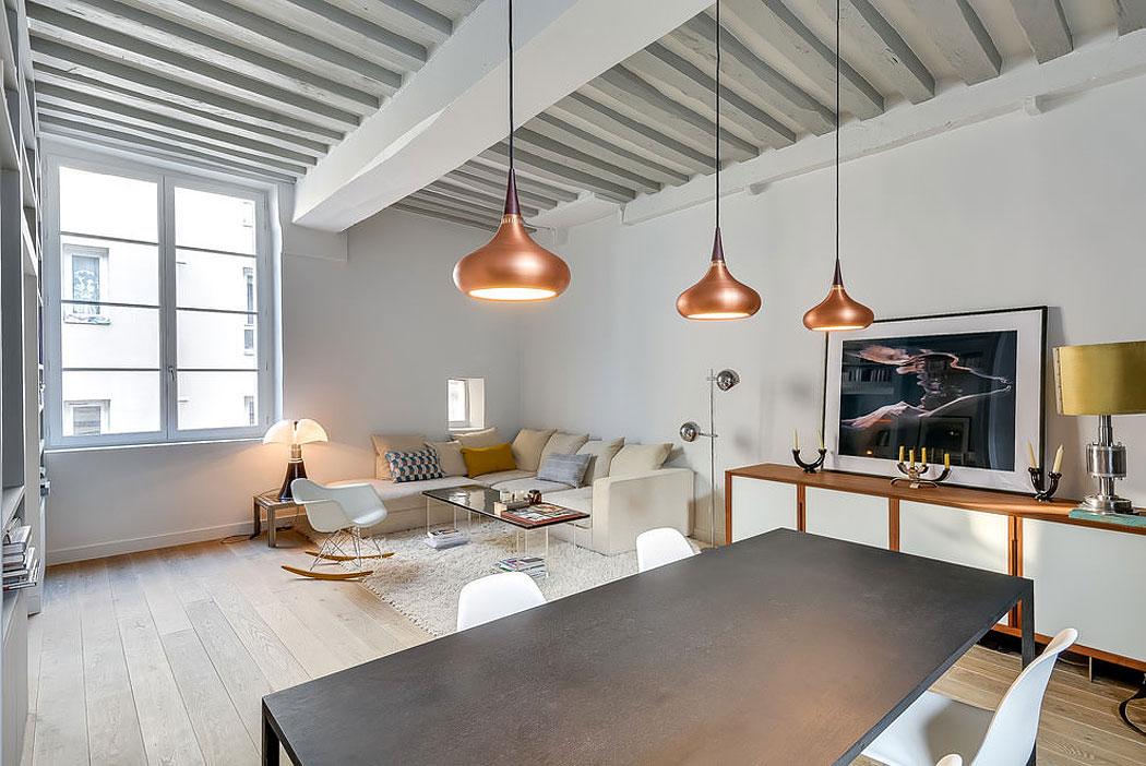 Modern lägenhet i Paris designad av den franska inredningsarkitekten Tatiana-Nicol-4 Modern lägenhet i Paris designad av den franska inredningsarkitekten Tatiana Nicol