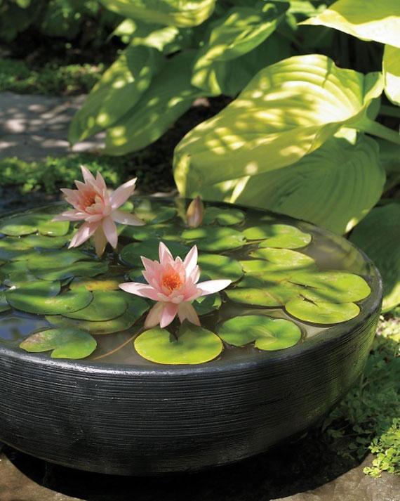 w28 Bakgårdsdammar och idéer för vattenträdgård - 31 exempel