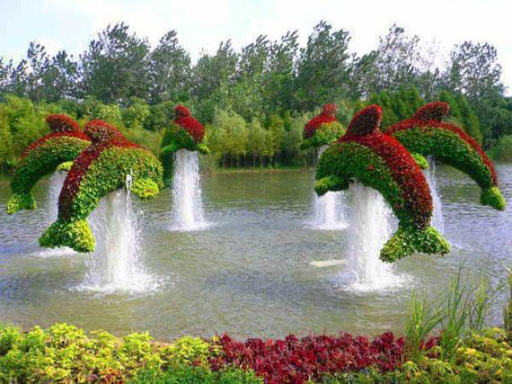 w16 Bakgårdsdammar och idéer för vattenträdgård - 31 exempel