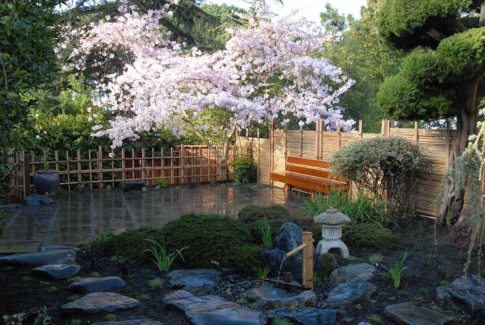 Ta Zen in i ditt liv genom att skapa en japansk trädgård8 Ta Zen in i ditt liv genom att skapa en japansk trädgård