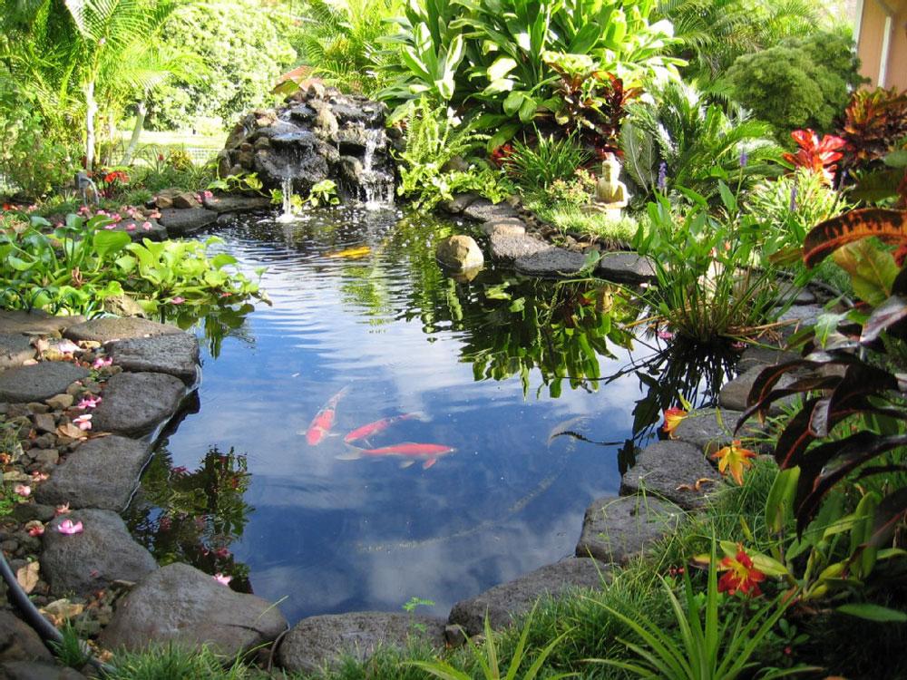 Skapa en unik bakgård med dessa trädgårdsdammdesignidéer-2 Skapa en unik bakgård med dessa trädgårdsdammdesignidéer