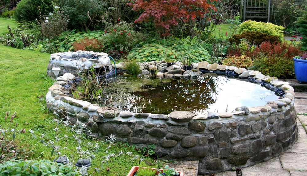 Skapa en unik bakgård med dessa designidéer för trädgårdsdammar-5 Skapa en unik bakgård med dessa designidéer för trädgårdsdammar