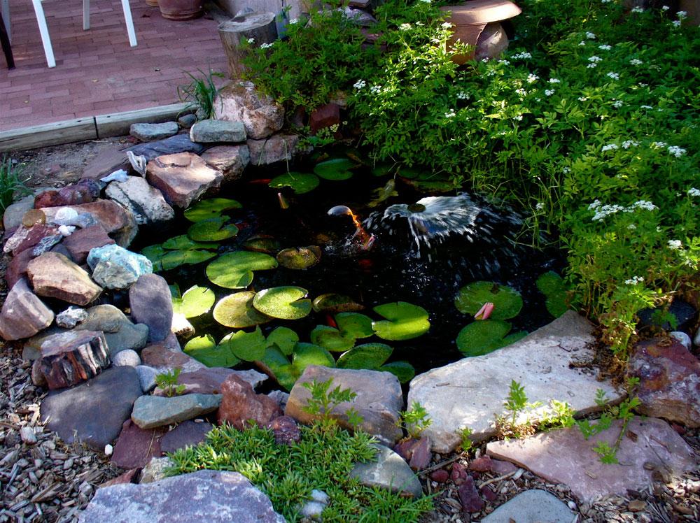 Skapa en unik bakgård med dessa trädgårdsdammdesignidéer-11 Skapa en unik bakgård med dessa trädgårdsdammdesignidéer
