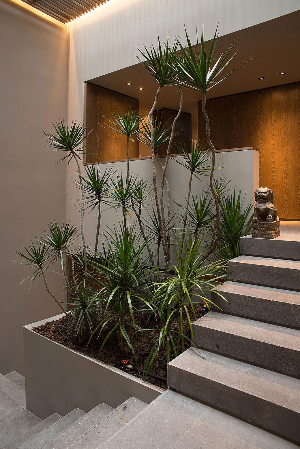 Barrancas-huset erbjuder en inblick i lyxlivet 10 Barrancas-huset erbjuder en inblick i lyxlivet