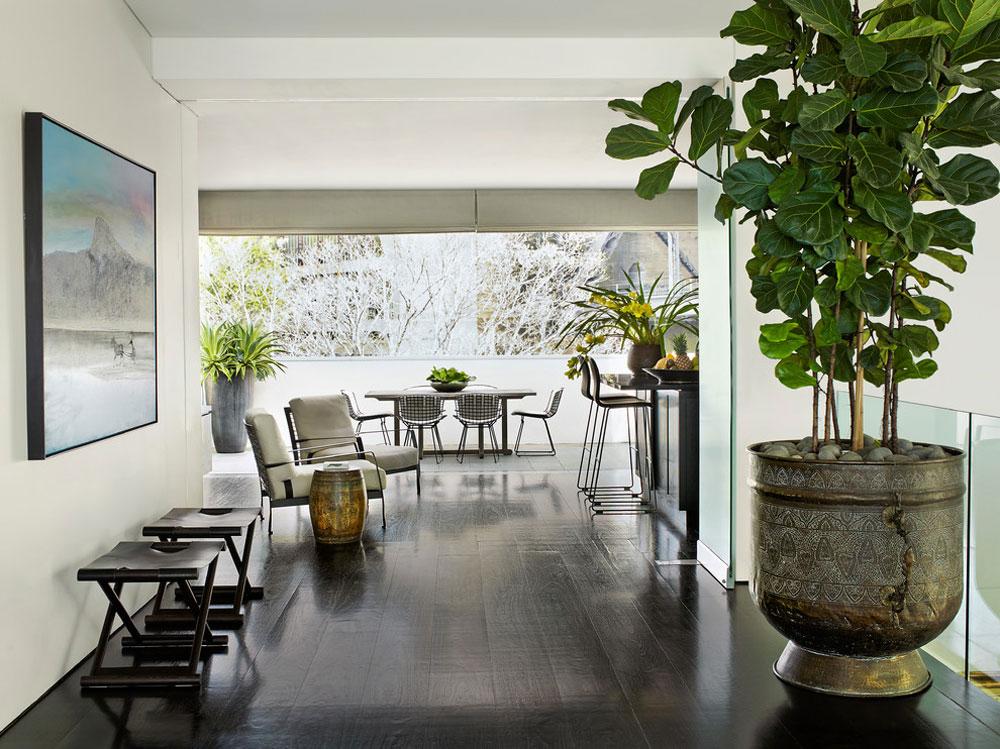 Dekorera-ditt-hus-interiör-med-växter-5 Dekorera interiören i ditt hus med växter