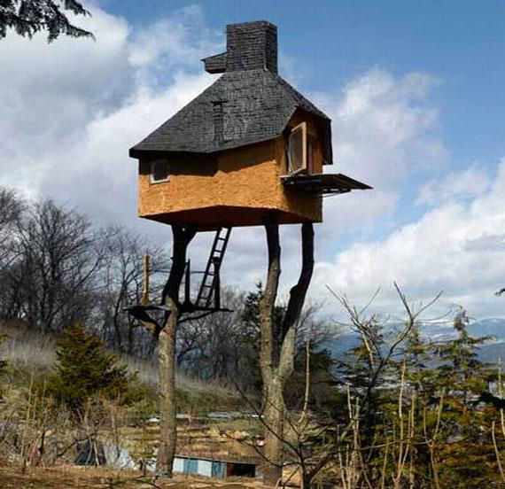 t8 Cool Treehouse designidéer att bygga (44 bilder)