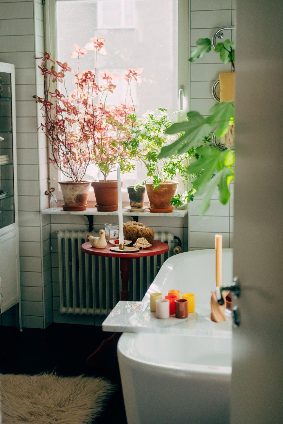 Dekorera ditt badrum med vackra växter