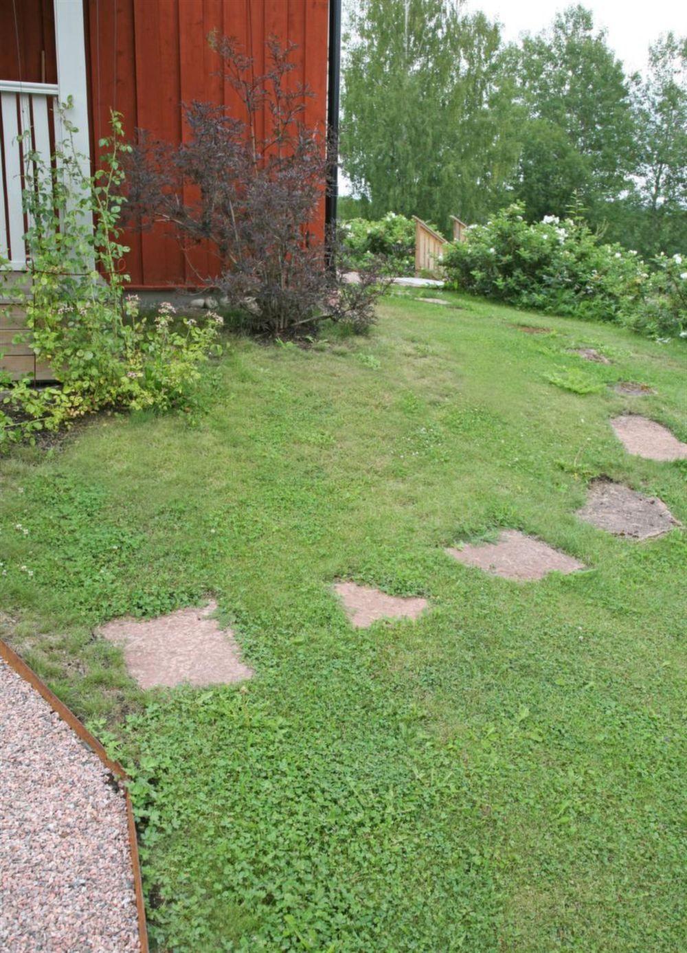 Gräsmatta och trädgård accenter