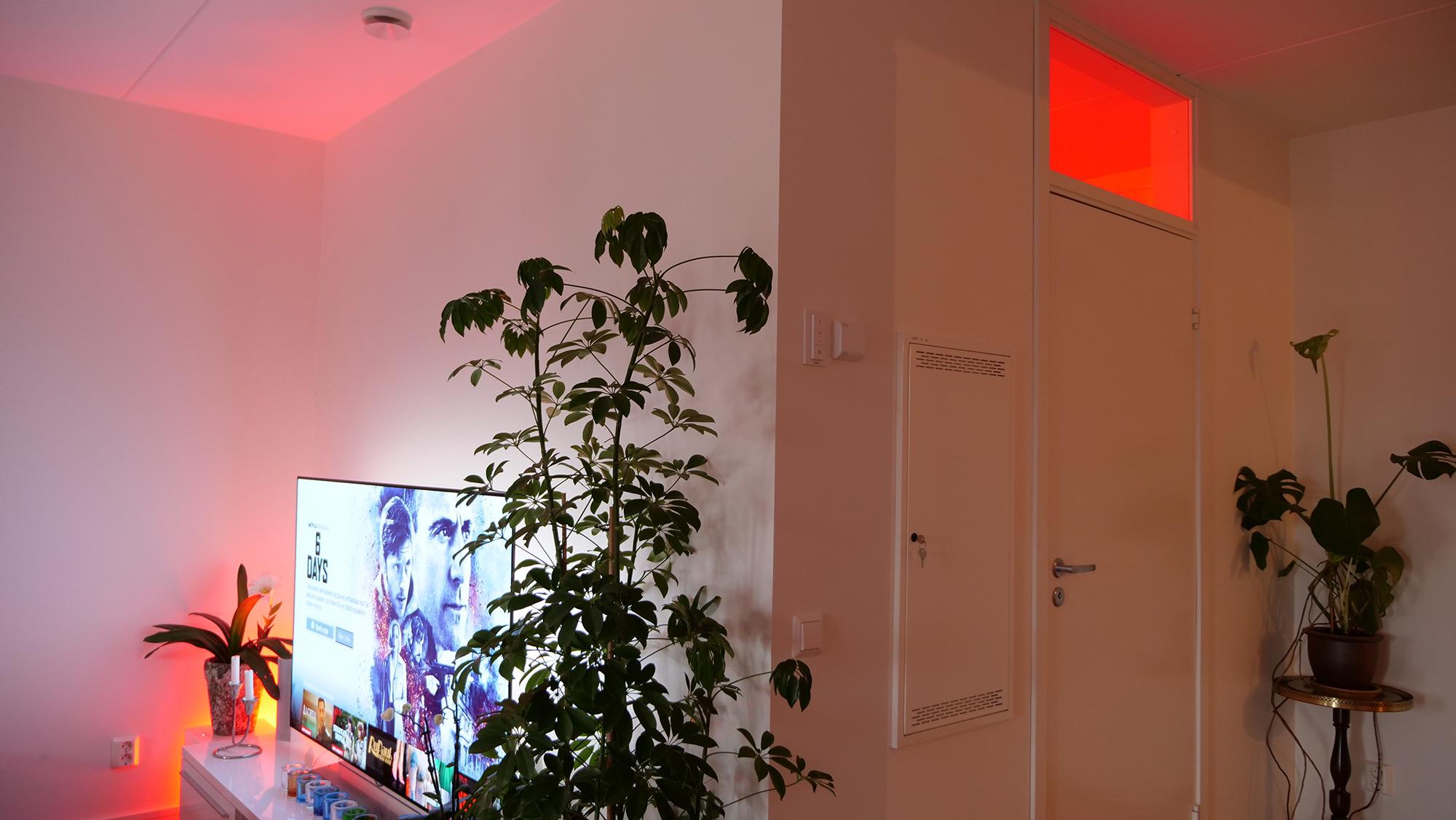 Renoverar du ditt hem?  4 saker att se efter när du förbättrar din hembelysning
